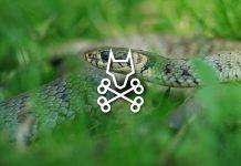 Snake Deterrent Review